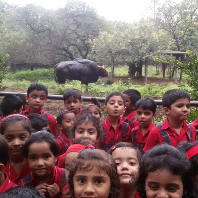Visit to the Katraj Zoo